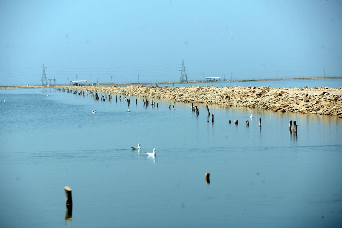 جان دوباره زیست بوم بینالمللی هورالعظیم و تکذیب آلودگی نفتی