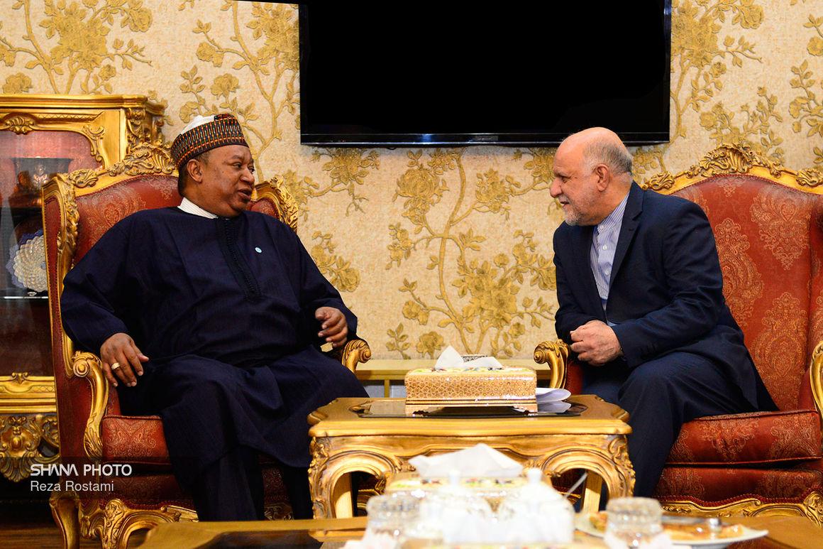 دیدار وزیر نفت با دبیر کل سازمان کشورهای صادرکننده نفت (اوپک) در تهران