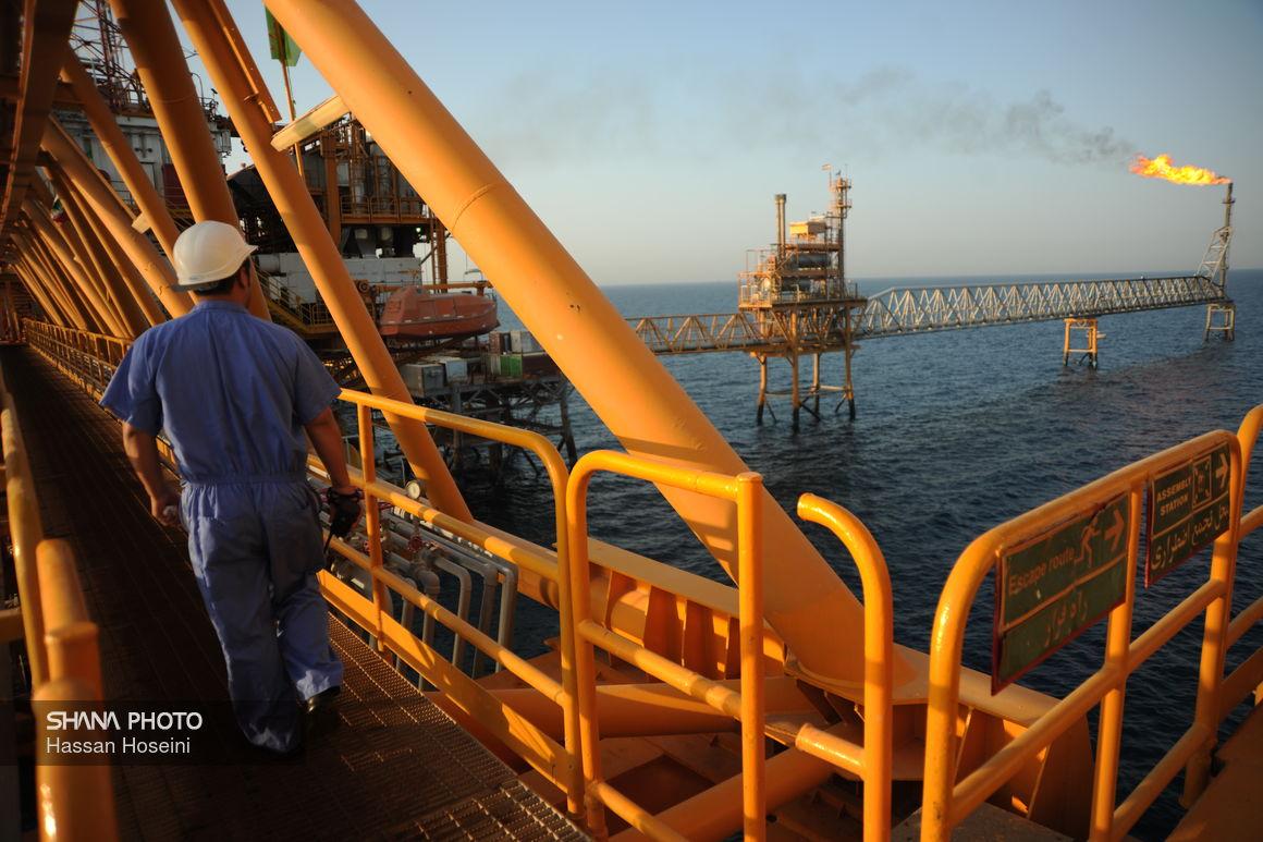 آلودگی نفتی در سواحل خلیجفارس جمعآوری شده است