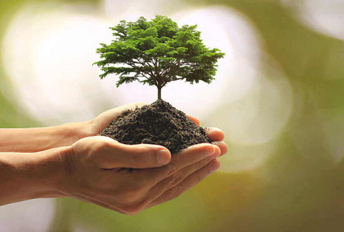 ضرورت مصرف بهینه انرژی همسو با اجرای مدیریت سبز