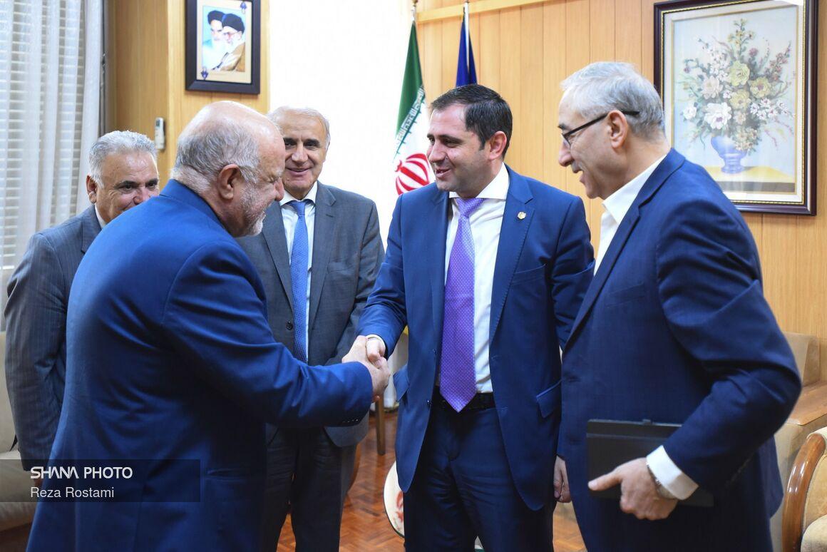 وزیر نفت با وزیر مدیریت و زیرساختهای ارمنستان دیدار کرد