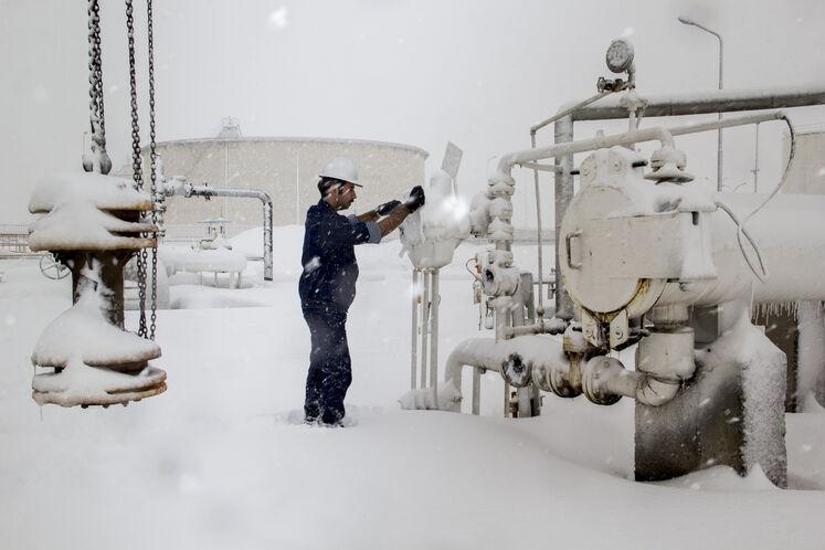روز برفی در تاسیسات شرکت خطوط لوله و مخابرات نفت منطقه تهران