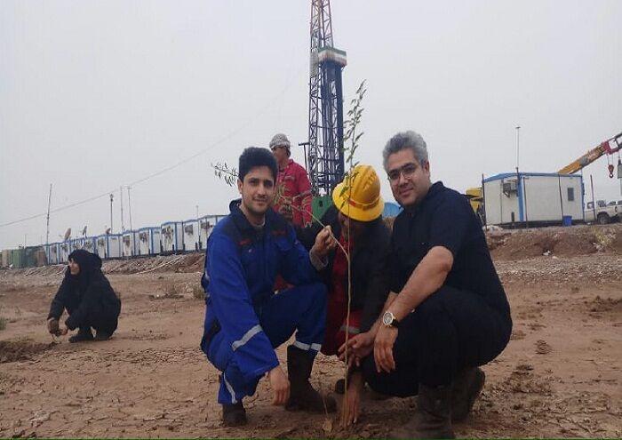 کاشت ۶۰۰ اصله نهال پیرامون دستگاههای حفاری در روز ملی هوای پاک