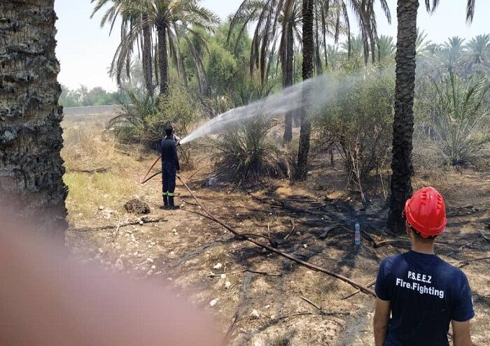 آتشسوزی نخلستان روستای بساتین مهار شد