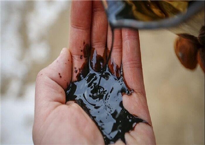 نتایج جشنواره مجازی فیلم کوتاه و عکس نفت اعلام شد