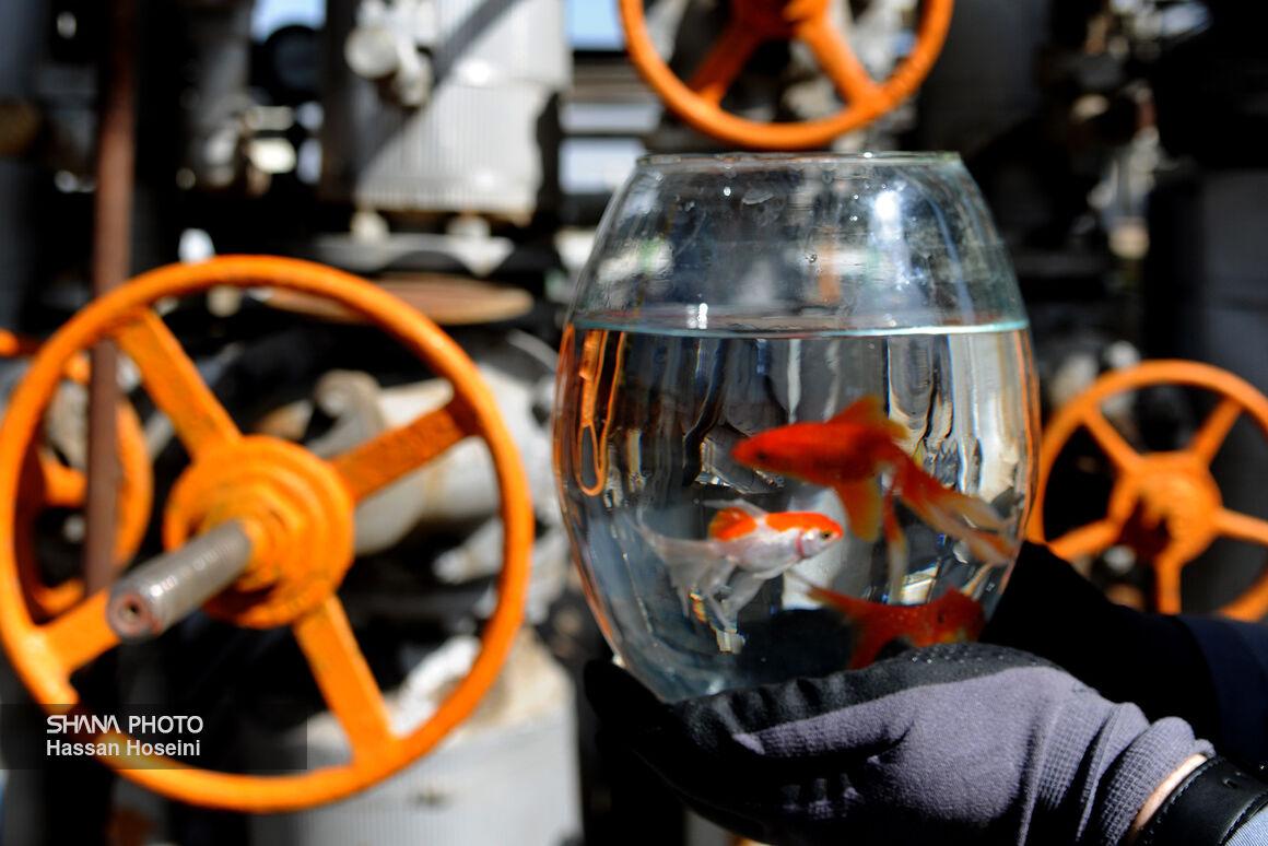 کارنامه مثبت صنعت گاز در عبور از زمستان ۹۹