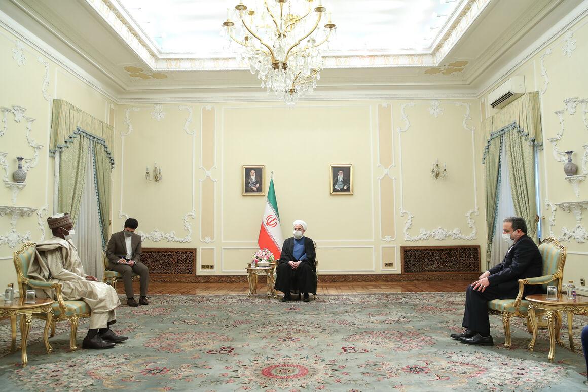 ایران و نیجریه ظرفیتهای مطلوبی برای همکاری در حوزه انرژی دارند