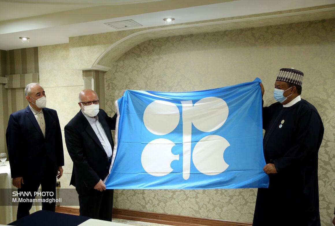 دیدار وزیر نفت با دبیرکل اوپک
