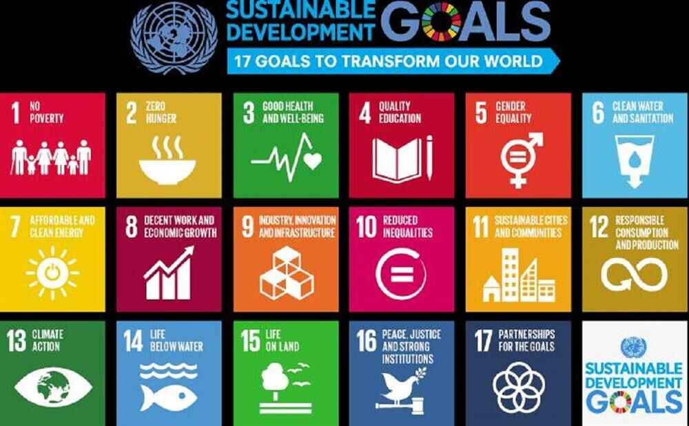 1st Introductory Course Held on Sustainable Development Goals