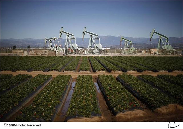 Oil Price Slump in North America; Challenges & Consequences