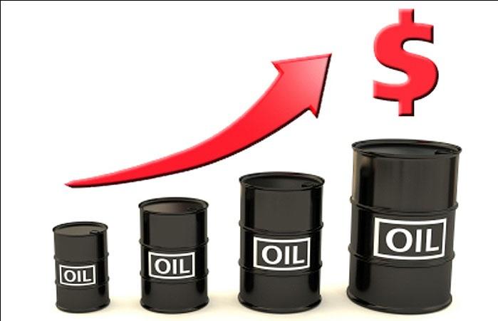 قیمت سبد نفتی اوپک به مرز ۷۳ دلار رسید